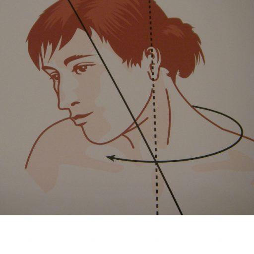Grafik eines Kopfes mit Achsen